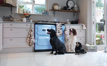 three dogs in a kitchen