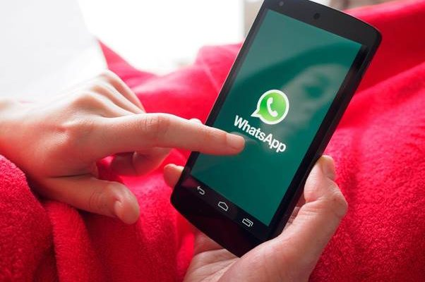 android phone displaying WhatsApp icon