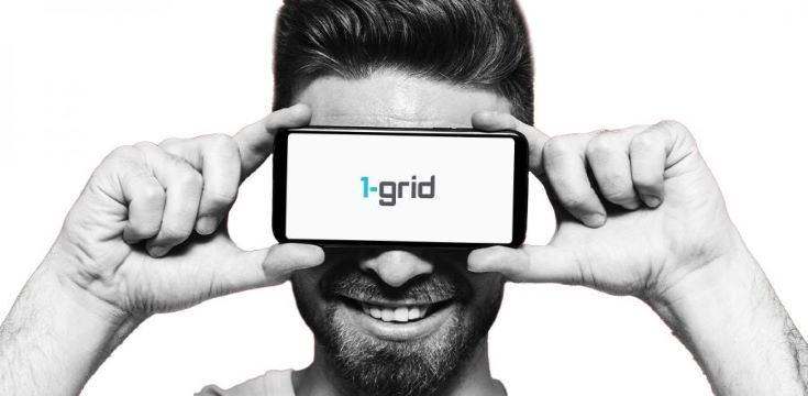 web hosting company 1-grid