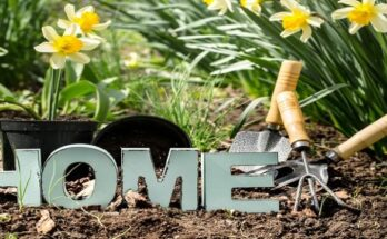 Spring home improvements (1) (003)